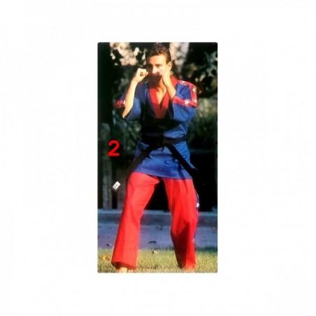 Fulltegui Tagoya blue and red