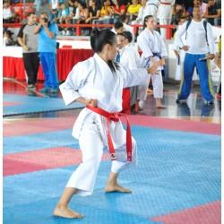 Kamikaze Karategi Kata Premier